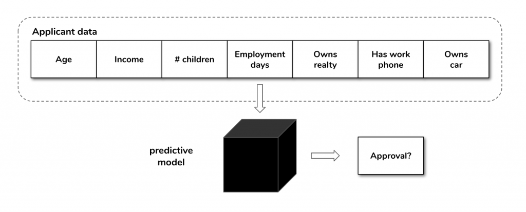 Inputs and outputs for the credit card application predictive model